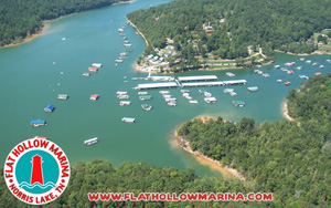Pleasing Norrislakeinfo Com Norris Lake Tennessee Information Interior Design Ideas Greaswefileorg